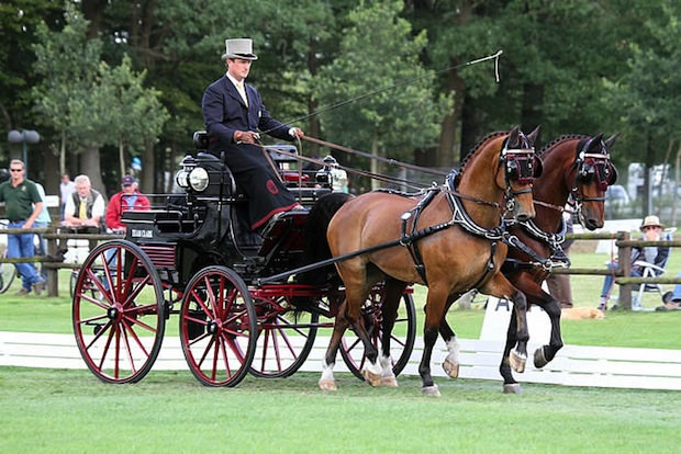 Combined Driver Chester Weber donated a carriage ride to the silent auction at the Sebastian Ferrero Foundation's 4th annual fundraising event, Noche de Gala. (Photo courtesy of My Elisabeth Weber | Horses in the South)