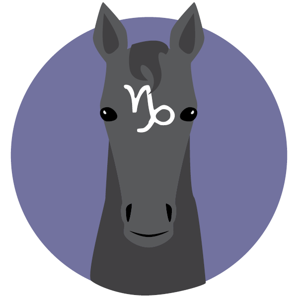 Finally, Horse Zodiac Signs Have Arrived  What's Yours?
