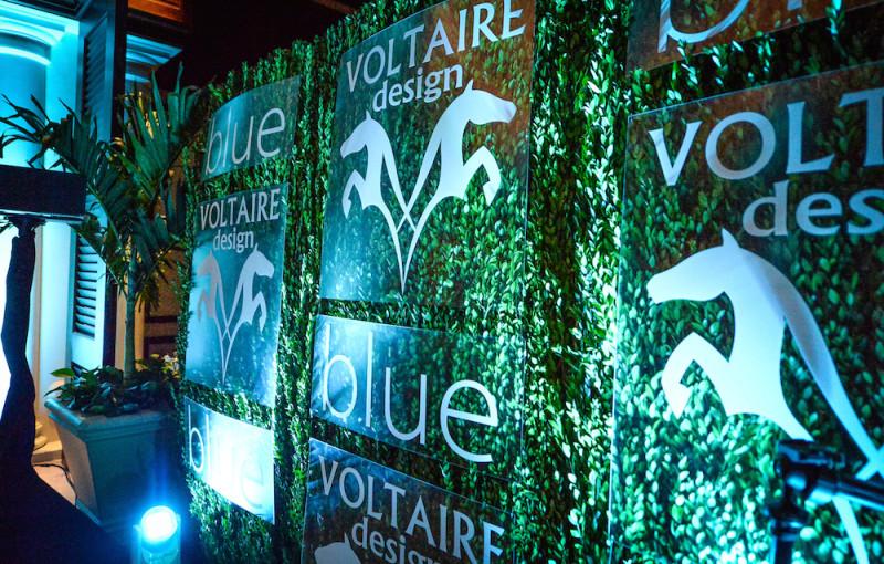 VoltaireBlue4