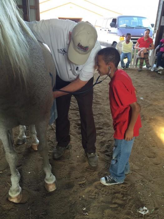 detroit-horse-power-bringing-an-outside-world-to-inner-city-kids_4