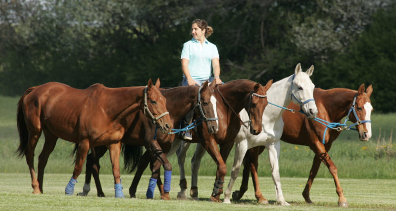 polo-canada-article-photos-032