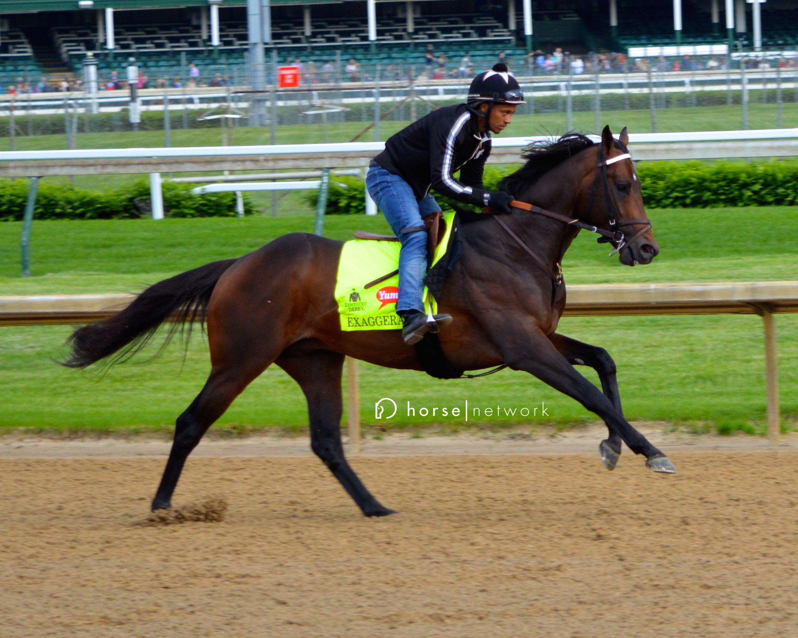 Kentucky Derby contender Exaggerator shows off his powerful stride.