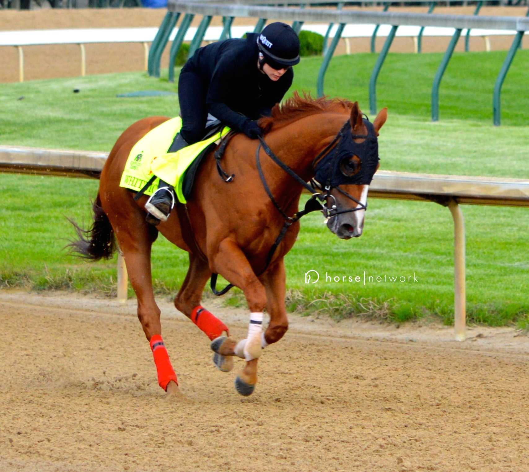 Derby contender Whitmore